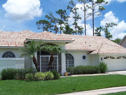 Tile Roof Cleaning Tampa Before Cleaning Tile Roof Cleaning Tampa After  Cleaning