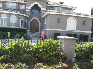 tampa-roof-cleaning-0591