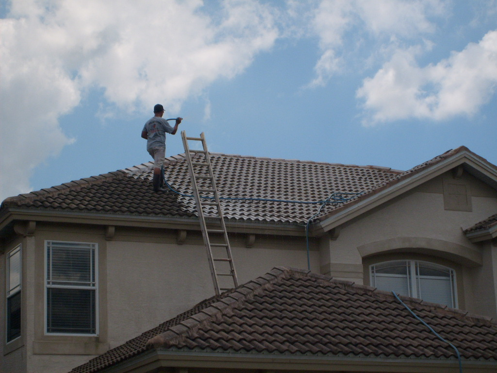 APPLE ROOF NON PRESSURE CLEANING TAMPA FL 7401 Patrician Place Tampa 33619  (813)293 1733 (813)655 8777