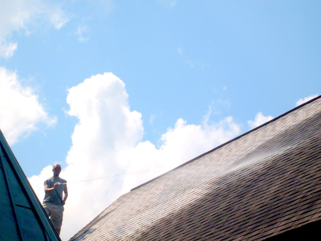 how to remove mold and mildew from roof shingles - Www.theri