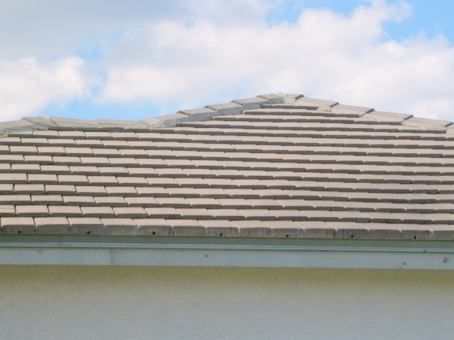 Roof Cleaning Tampa Florida 33547