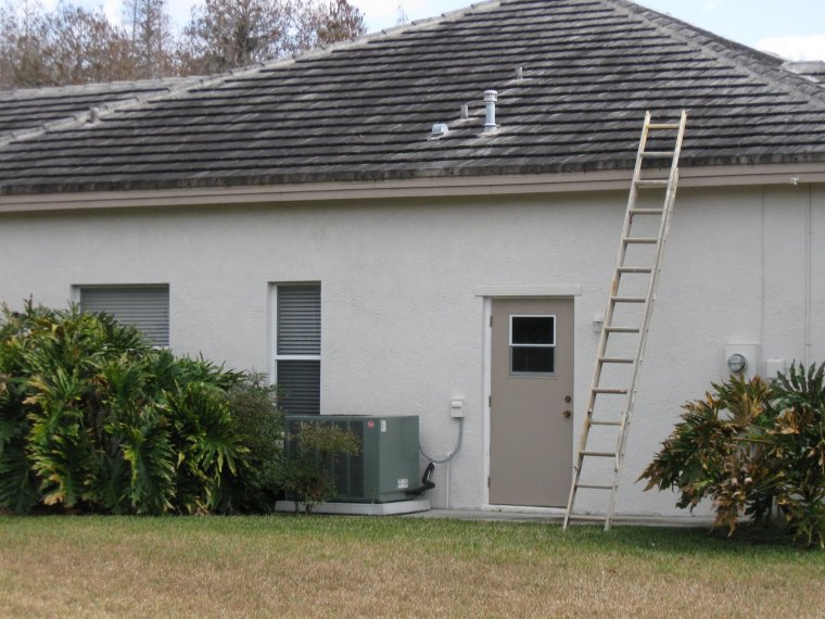 Roof Algae Cleaning Tampa Florida