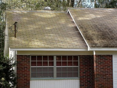 No Pressure Algae Roof Cleaning Tampa Florida