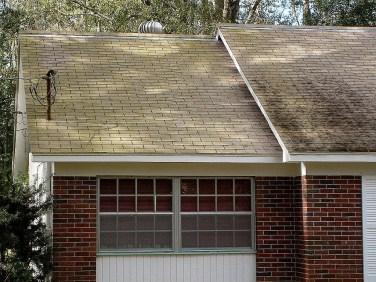 No Pressure Algae Roof Cleaning Tampa Florida