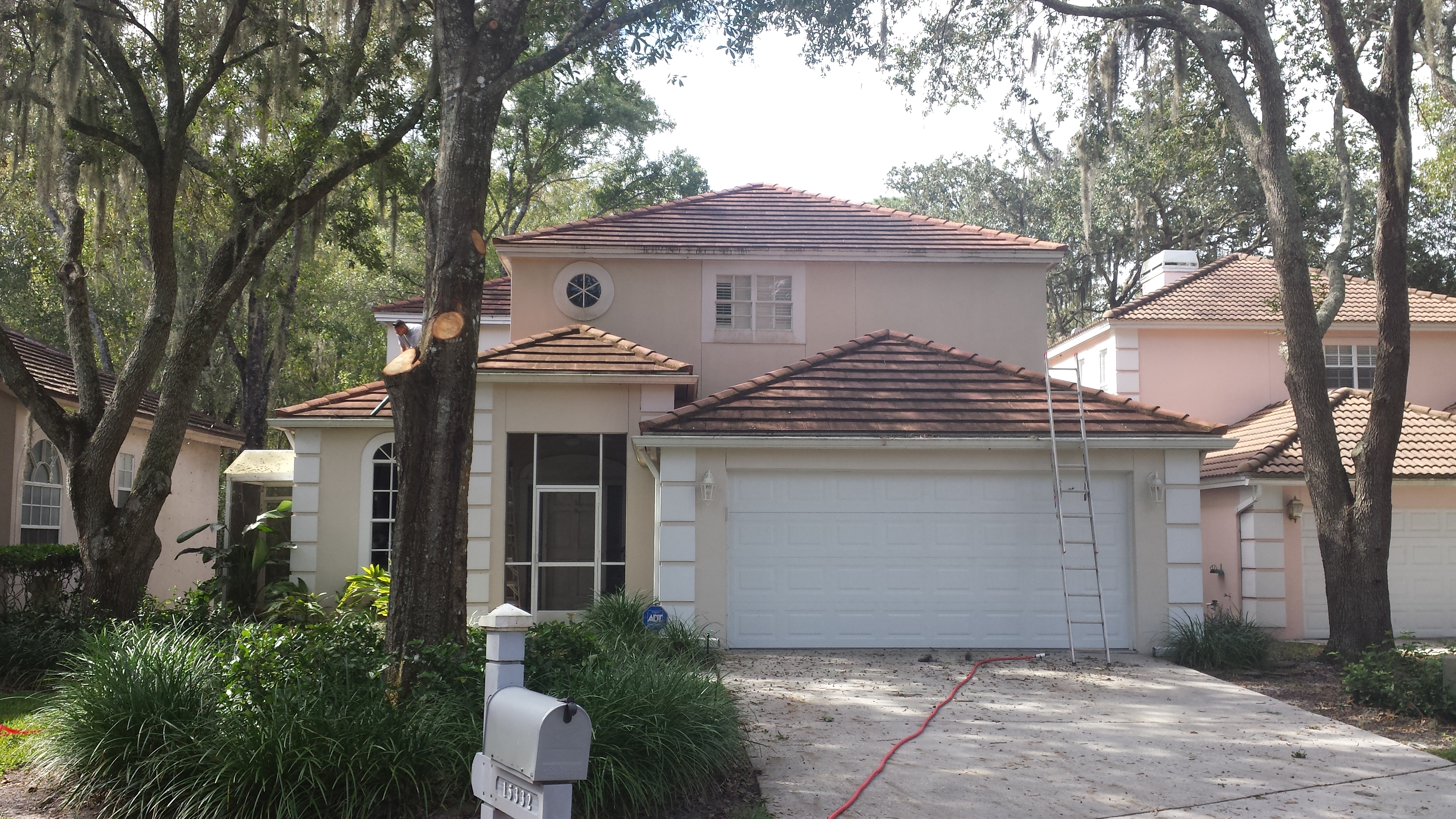 Apple Roof Cleaning Of Tampa (813)655 8777