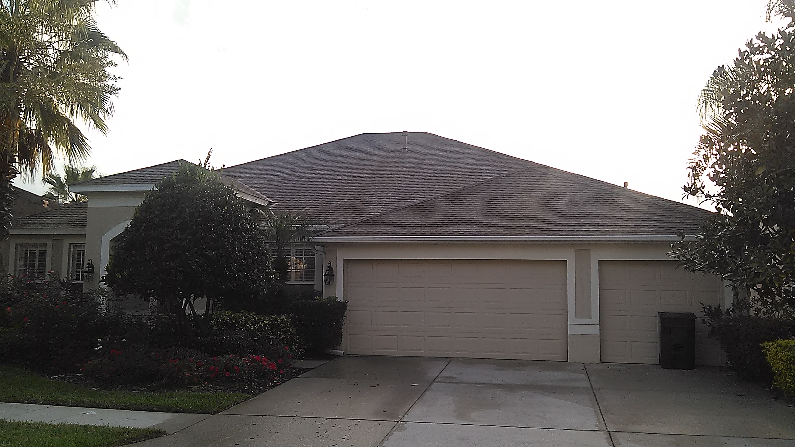 Roof Cleaning Tampa Florida Apple Non Pressure Roof