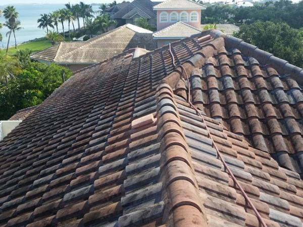 Dirty Tile roof in Tampa before it was cleaned