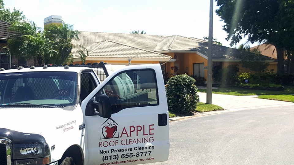 Tile Roof Cleaning Explosion Tampa Florida U2013 Roof Cleaning Tampa Florida