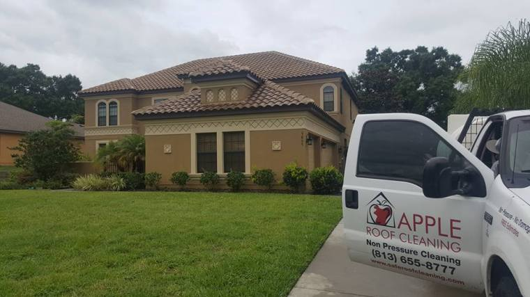Roof Cleaning Tampa Florida – Apple Non Pressure Roof ...